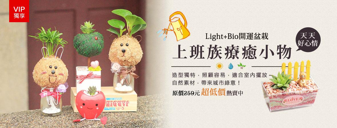 Light+Bio辦公室開運造景盆栽-商店街