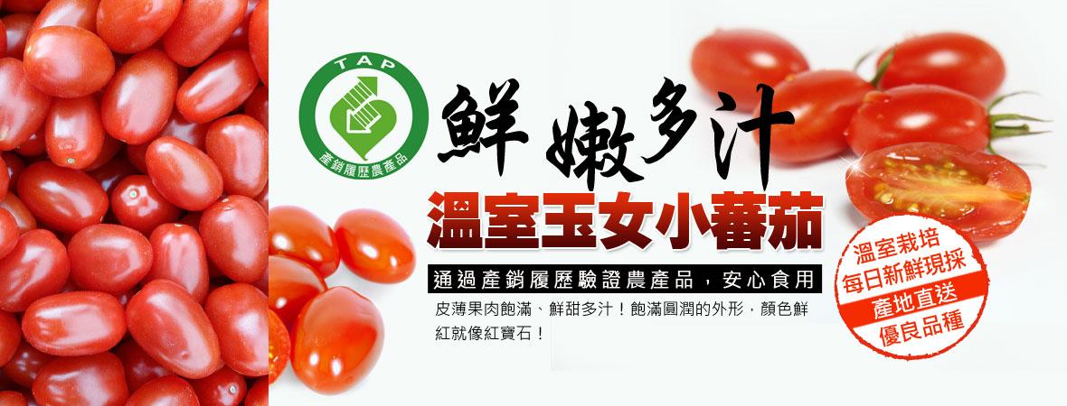 溫室玉女小番茄-輕鬆購