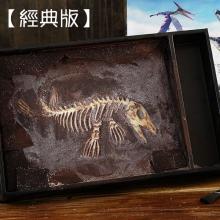 【經典版】恐龍化石巧克力(滄龍) ]