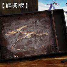 【經典版】恐龍化石巧克力(翼龍)