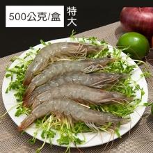卡馬龍巨無霸 美洲白晶蝦(20/30)500公克/盒