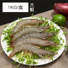 卡馬龍巨無霸 美洲白晶蝦(30/40)1KG/盒