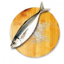 魚之達人鮮撈竹筴魚一夜干