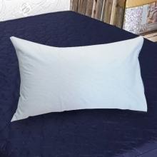 專業級完全防水保潔墊-枕套(2入) [天空藍]