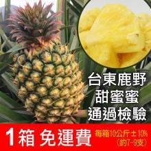 外銷等級-台東鹿野金鑽鳳梨 10公斤(外銷箱)
