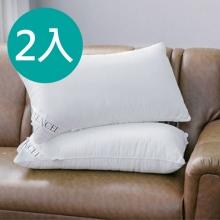 MIT 奧地利進口天絲壓縮枕*2入