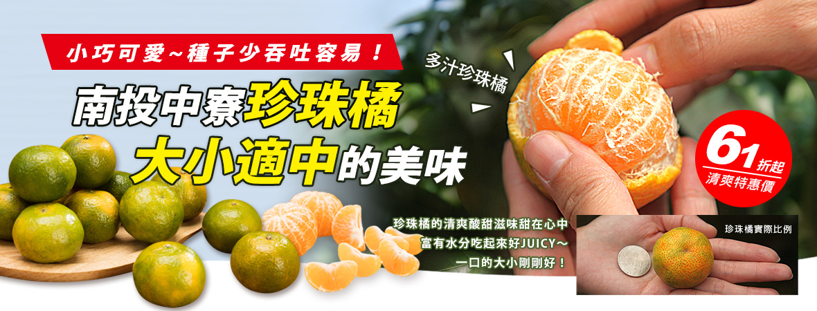 南投中寮珍珠橘